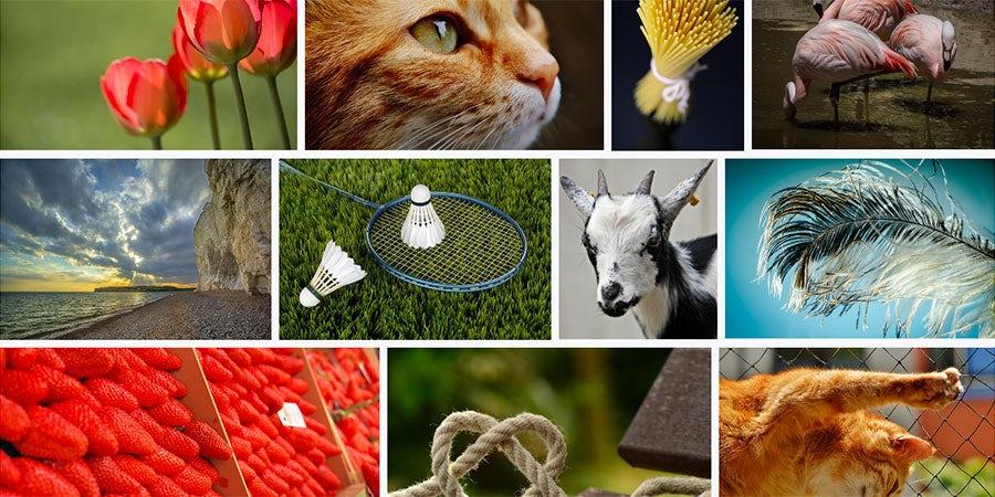 Бесплатные стоковые изображения. 31 ресурс. 16