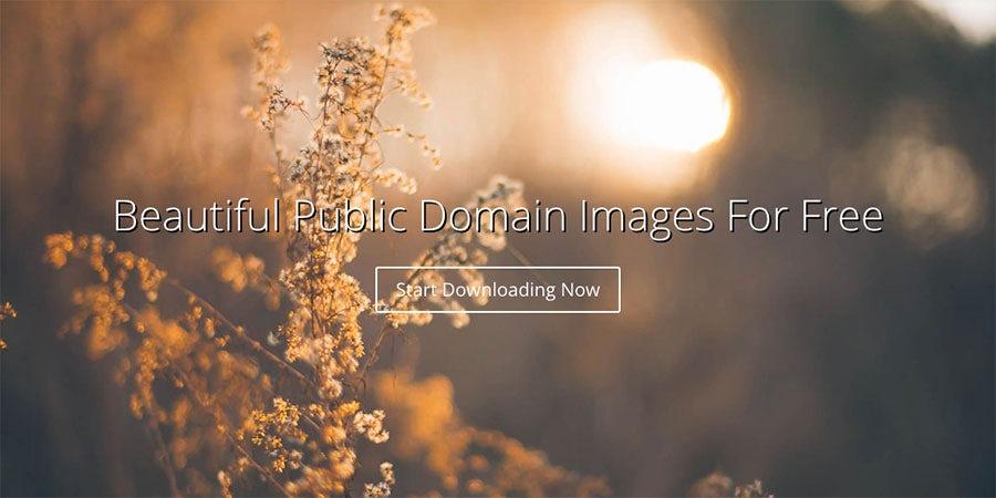 Бесплатные стоковые изображения. 31 ресурс. 13