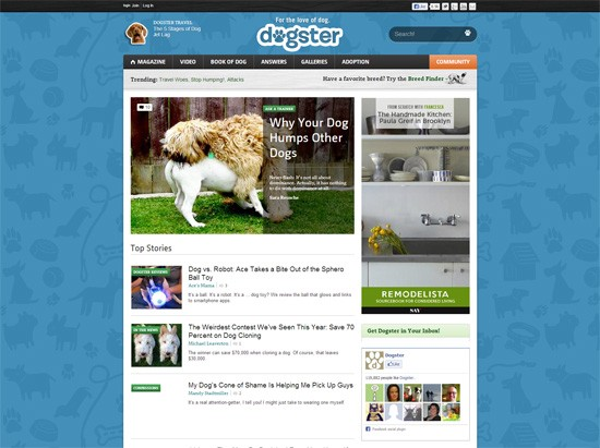 Секрет создания веб-сайтов: архитектура веб-сайтов 7