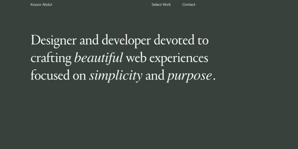 9 примеров портфолио веб-разработчиков, которые вдохновят вас 2
