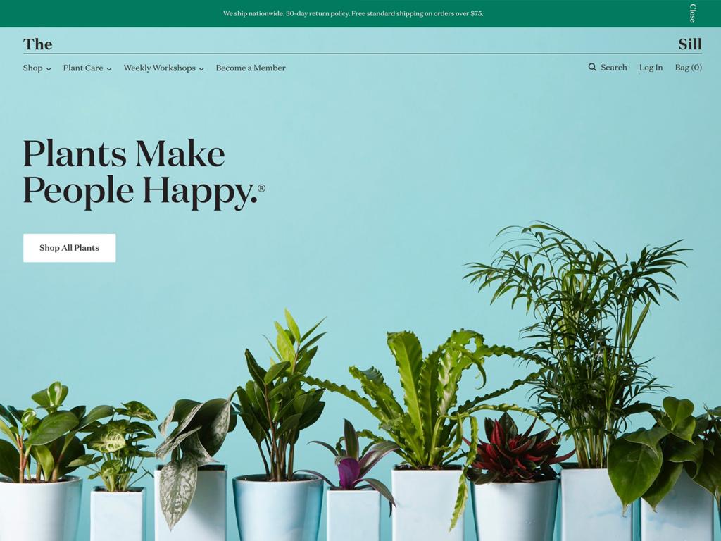 что такое веб-дизайн и разработка